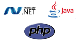 Readymade Final Year ASP.NET Project in Lucknow